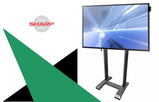 I maxi schermi li supporta lo Scenario di Euromet