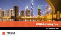 CEDIA: Seminari per Custom Installer a Dubai