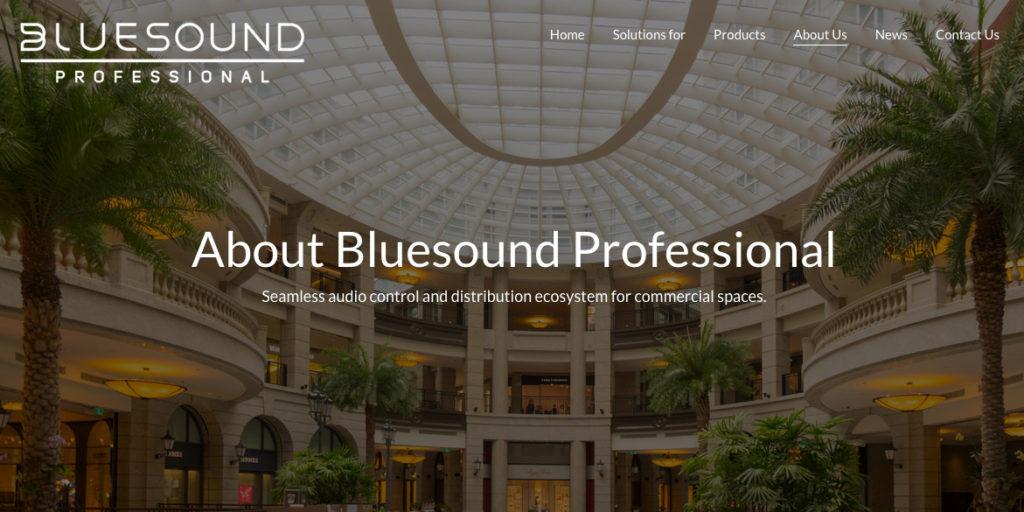 Prase Bluesound Professional
